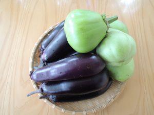 自然農 竹 茄子 のコピー