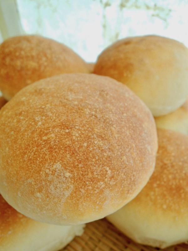 天然酵母パン 味噌玄米どぶろく酵母