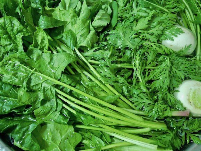 朝採り野菜 ほうれん草 春菊 かぶ