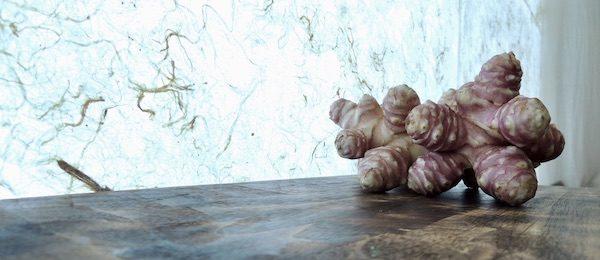 菊芋 トピナンブール