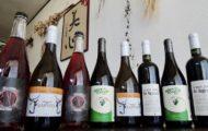 ヴァンナチュール オーガニックワイン ビオワイン