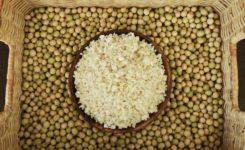 無農薬栽培 大豆 麹 オーガニック
