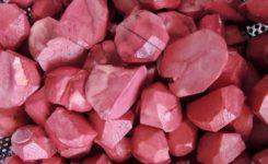 和栗の赤ワイン煮込み。